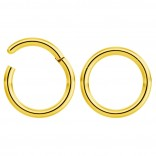 2pc 14g Hinged Clicker Captive Bead Ring Gold 10mm Helix Earring Nose Hoop Rook Cartilage Tragus Lip Septum Forward Eyebrow Ear Lobe Nostril Rings Seamless Surgical Steel