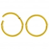 2pc 16g Hinged Clicker Captive Bead Ring Gold 10mm Helix Earring Nose Hoop Rook Cartilage Tragus Lip Septum Forward Eyebrow Ear Lobe Nostril Rings Seamless Surgical Steel