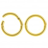 2pc 16g Hinged Clicker Captive Bead Ring Gold 8mm Helix Earring Nose Hoop Rook Cartilage Tragus Lip Septum Forward Eyebrow Ear Lobe Nostril Rings Seamless Surgical Steel