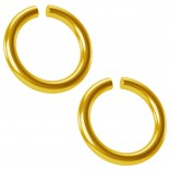 2pc 18g Gold Anodized Ring Seamless 6mm 1/4 Inifinity Hoop Endless Cartilage Earring Tragus Auricle
