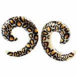 2pc 0g Leopard Spiral Guages Ear Stretching Plugs For Ears Earrings Taper Spirals Curl Flesh Piercing Jewelry