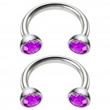 2pc 16g Stainless Steel Circular Barbell Horseshoe crystal Tragus Earrings Amethyst Crystal 8mm