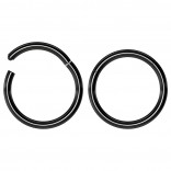 2pc 16g Hinged Clicker Captive Bead Ring Black 10mm Helix Earring Nose Hoop Rook Cartilage Tragus Lip Septum Forward Eyebrow Ear Lobe Nostril Rings Seamless Surgical Steel