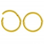 2pc 14g Hinged Clicker Captive Bead Ring Gold 12mm Helix Earring Nose Hoop Rook Cartilage Tragus Lip Septum Forward Eyebrow Ear Lobe Nostril Rings Seamless Surgical Steel