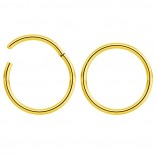 2pc 18g Hinged Clicker Captive Bead Ring Gold 10mm Helix Earring Nose Hoop Rook Cartilage Tragus Lip Septum Forward Eyebrow Ear Lobe Nostril Rings Seamless Surgical Steel
