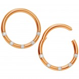 2pc 18g CZ Rose Gold Hoop Nose Ring Rose Seamless Segment Septum Small Stainless Steel Clip Hinged
