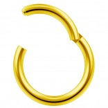 14g Gold Clicker Ring Seamless Hinged Nose Hoop Septum Daith Conch Piercing Earring 10mm 3/8