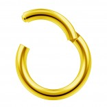 14g Gold Clicker Ring Seamless Hinged Nose Hoop Septum Daith Conch Piercing Earring 8mm 5/16