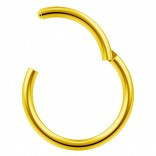 16g Gold Clicker Ring Seamless Hinged Nose Hoop Septum Daith Conch Piercing Earring 10mm 3/8
