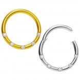 2pc 18g CZ Steel Gold Rose Gold Hoop Nose Ring Rose Seamless Segment Septum Small Stainless Steel