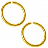 2pc 18g Gold Anodized Ring Seamless 10mm 3/8 Inifinity Hoop Endless Cartilage Earring Tragus Helix